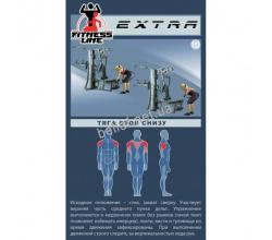 Профессиональная мультистанция InterAtletika EXTRA ST034 11